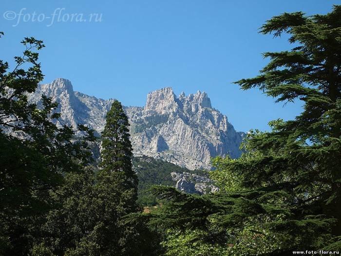 Горы Ай-Петри