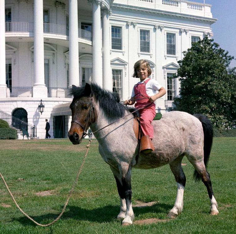 Самые «экзотические» президентские домашние животные. - Foto - Блоги -