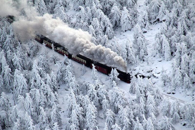 Снежный декабрь - Интересные фото