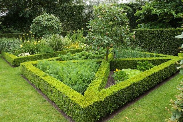 Украсить огород своими руками с фото фото 107
