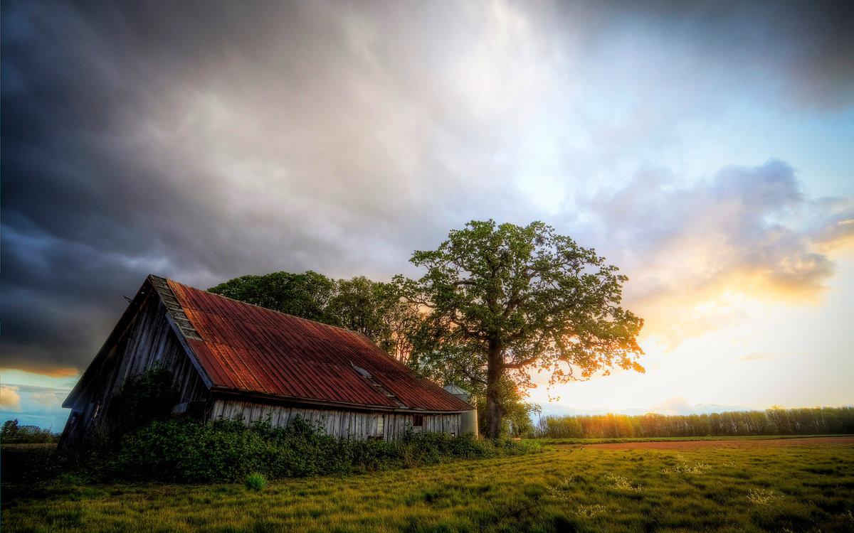 Фото сельских