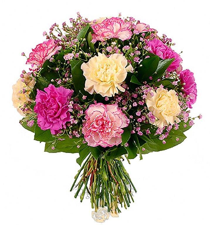 Козерогу женщине, красивые букет цветов из гвоздик фото