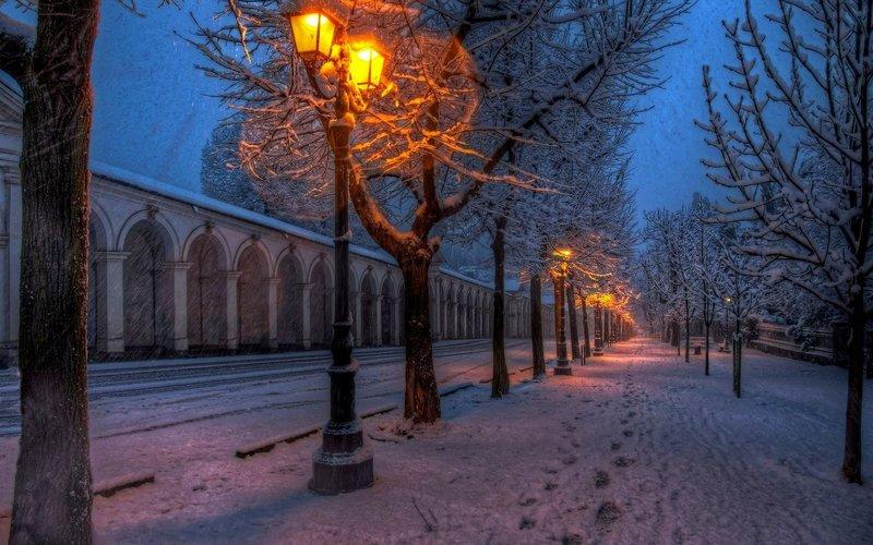 парк зимний