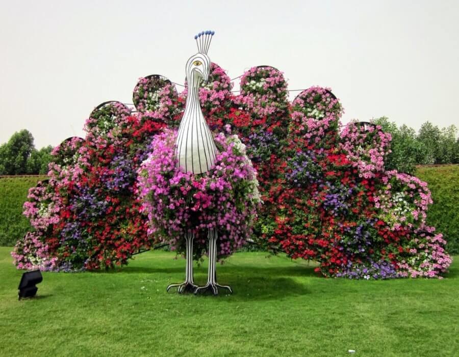 Каскад розы, купить самые красивые цветы в мире фото