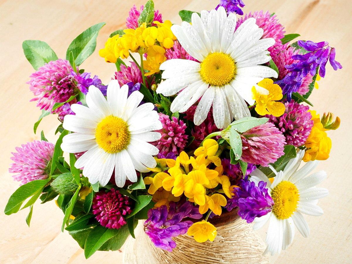 Полевые цветы в букетах картинки, подарок день рождения