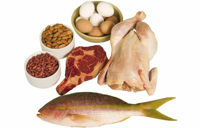 Протеин для роста мышц — SportWiki энциклопедия