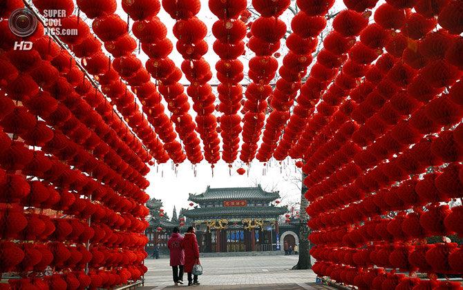 Два дня назад вступил в свои права Китайский Новый год 2013 — год Черной Водяной Змеи по лунному календарю.