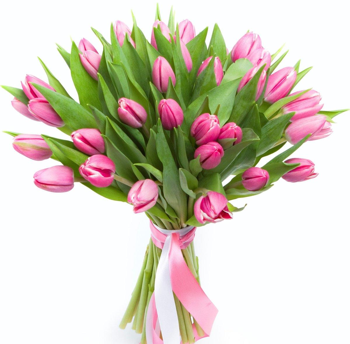 Цветов, пестрый букет тюльпанов