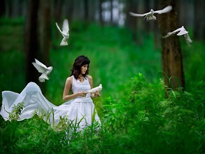 О красоте слагаются поэмы, баллады, песни, рисуются картины. Она вдохновляет на подвиги. Ею хочет обладать каждый.