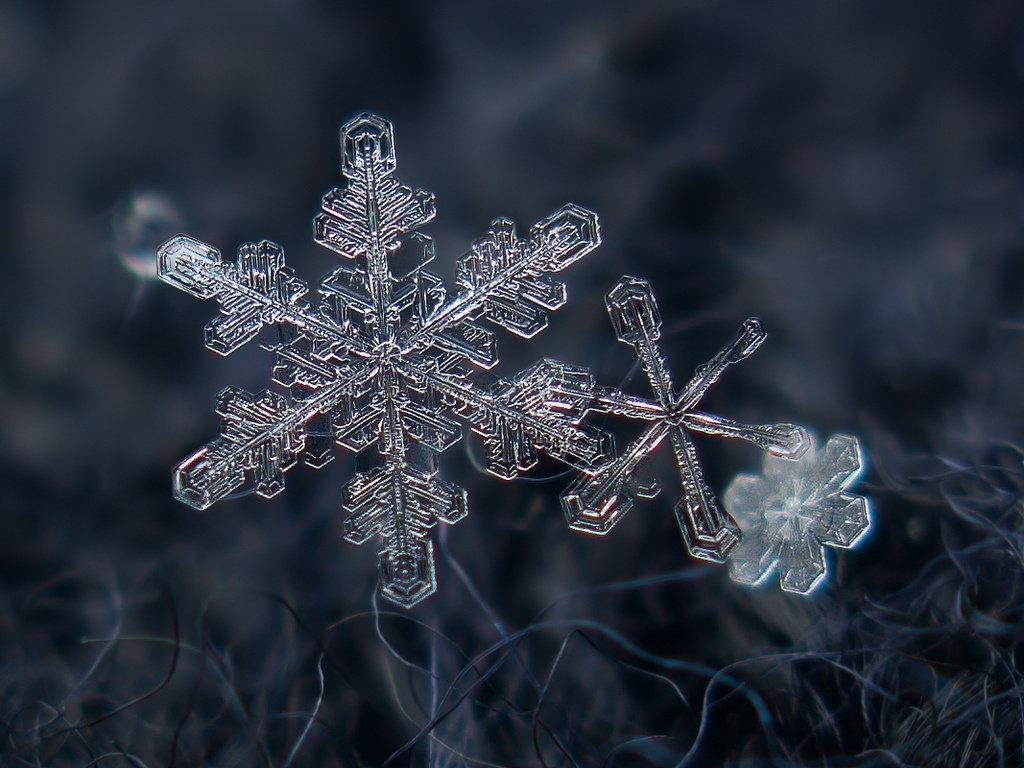 Зимняя сказка в макро
