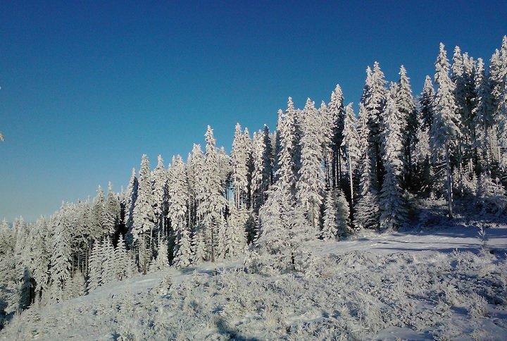 На склонах гор Скрычной и Климчока расположился горнолыжный курорт Щирк. Сам он невелик, но довольно популярен, благодаря тому, что здесь никогда не бывает ветров или метелей.