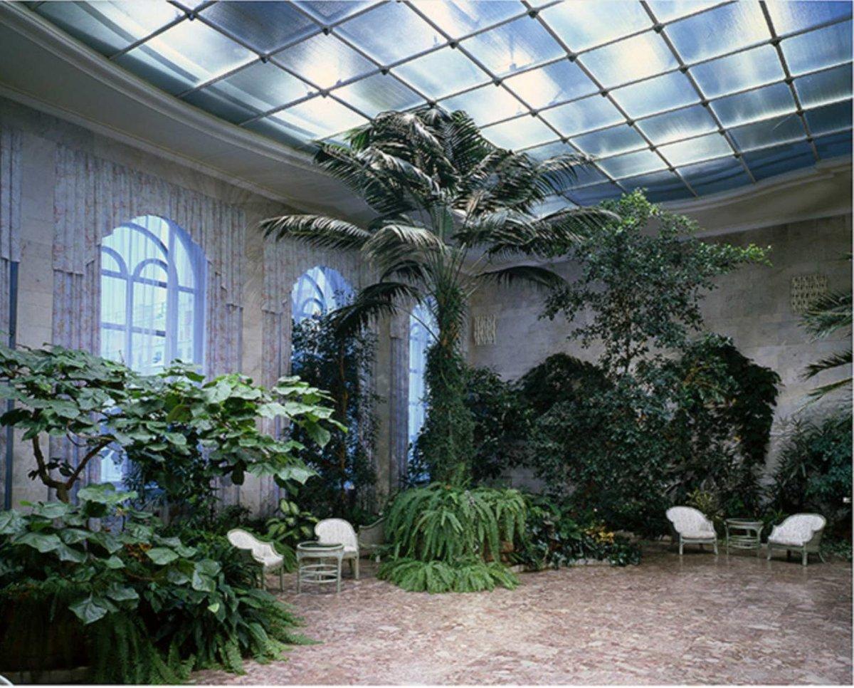 арбузных зимний сад фотообои нижний новгород удобство любого интерьера