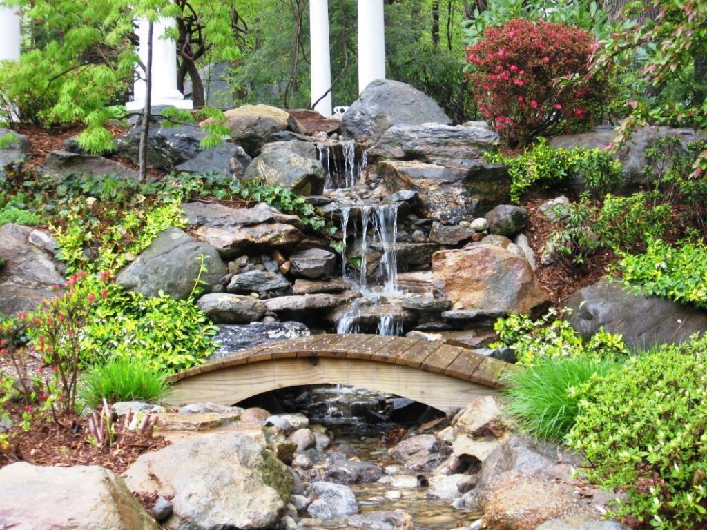 Многолетние садовые цветы и растения фото и описание такое