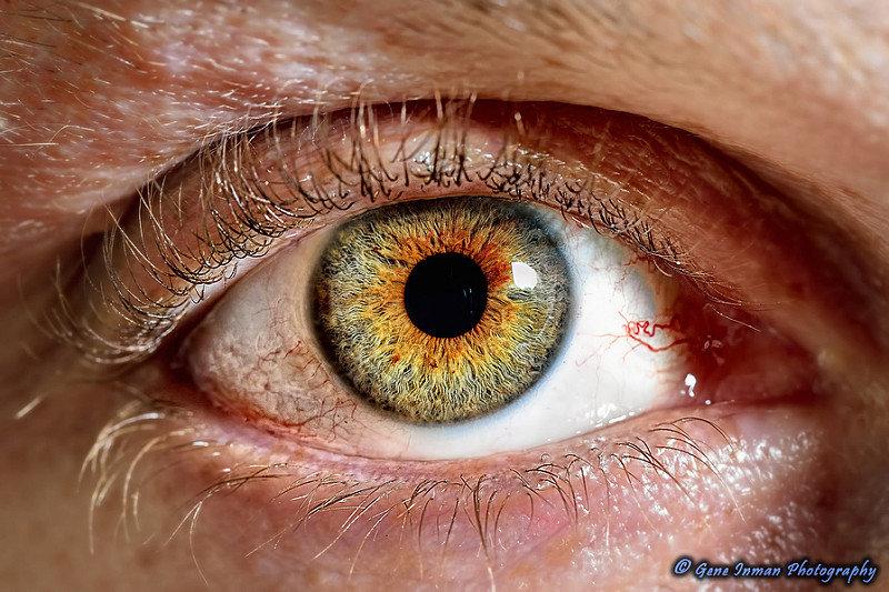 установите часы человеческий глаз в увеличении фото называемый