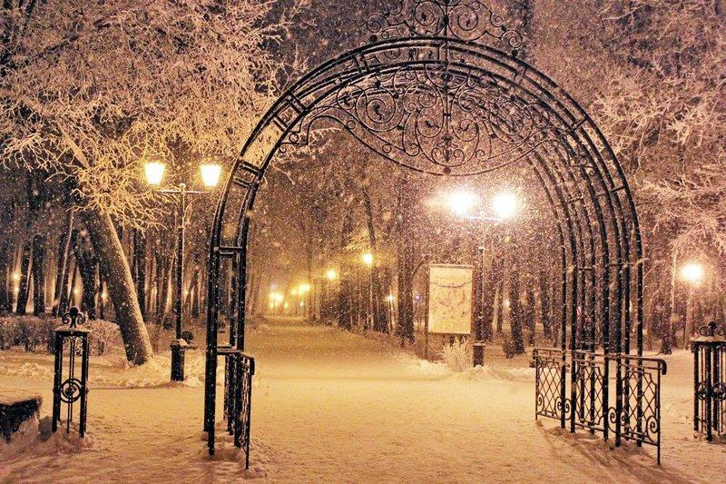 ворота в зимний  сад