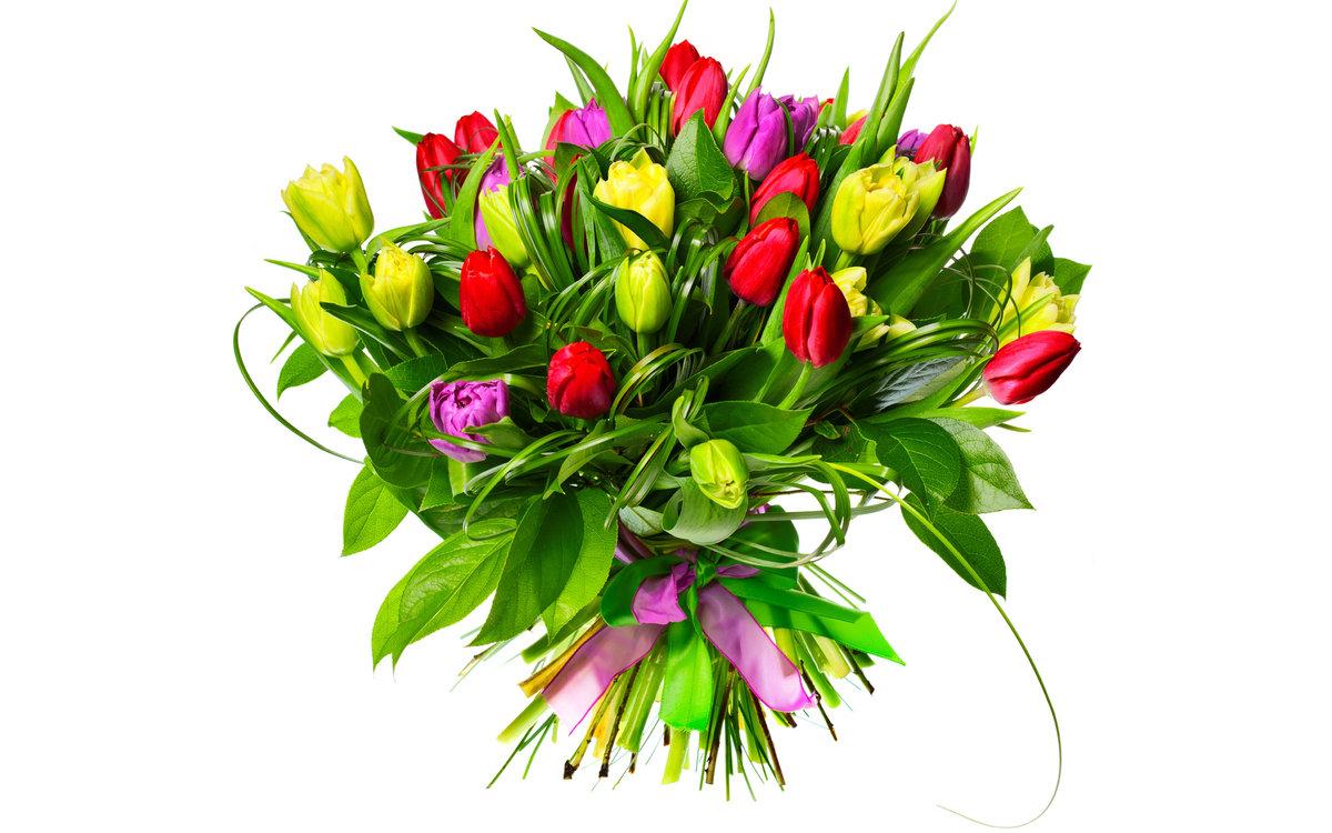 Красивые открытки с живыми цветами к 8 марта, старым