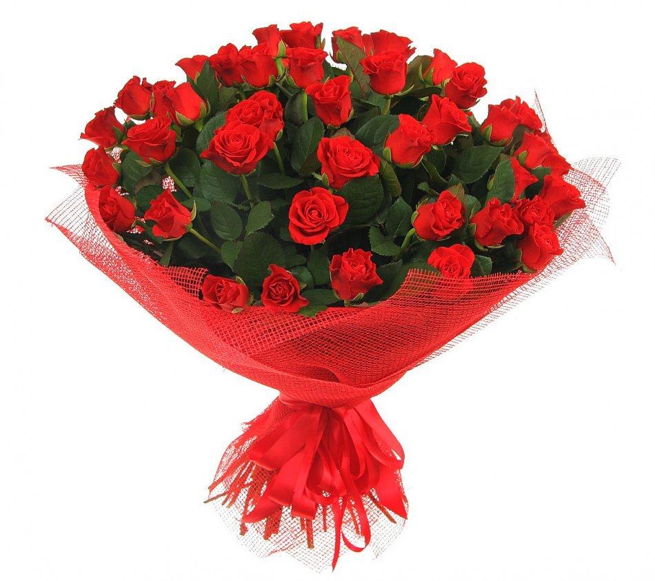 Киви телефон, картинки розы для танюши