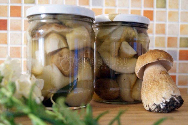 Рецепт вкусные грибы белые на зиму