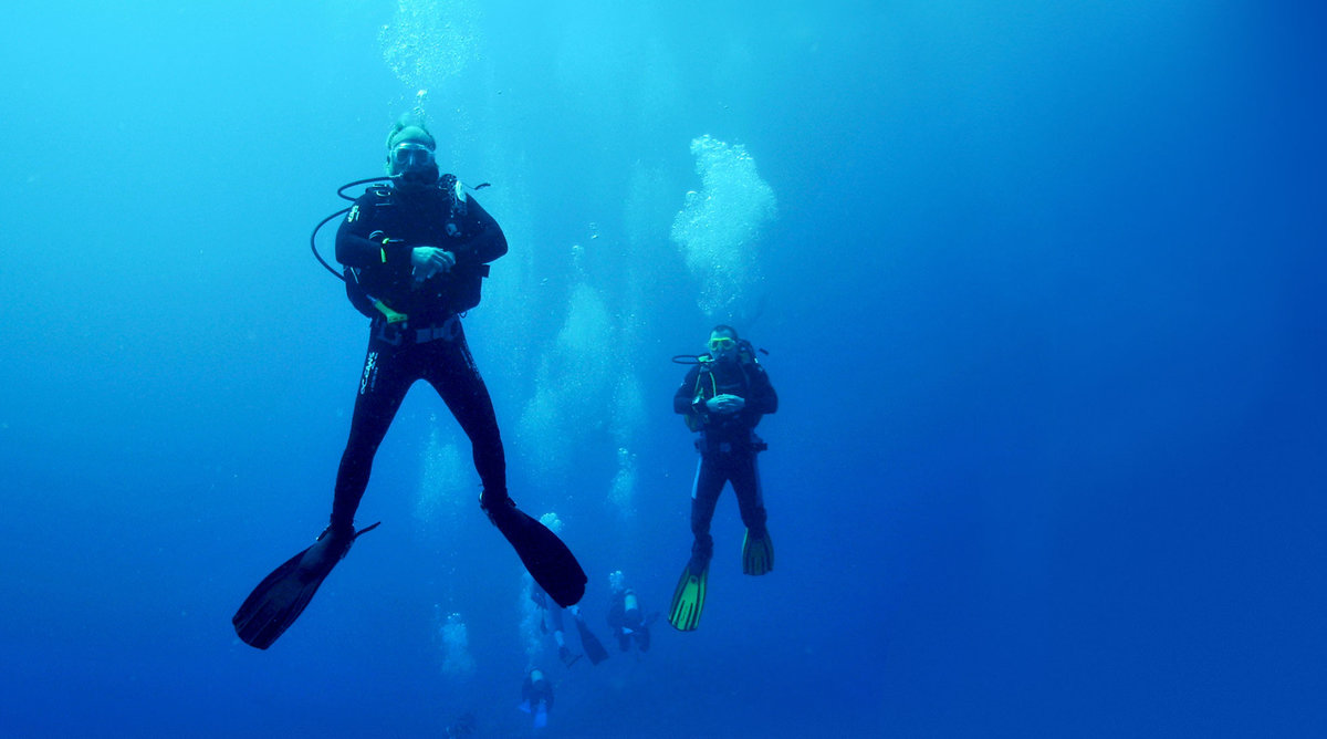 an analysis of the terrifying event of scuba diving Suicidal nitrogen inhalation by use of scuba toxicological analysis revealed 947% content of nitrogen in suicidal nitrogen inhalation by use of diving mask 3.