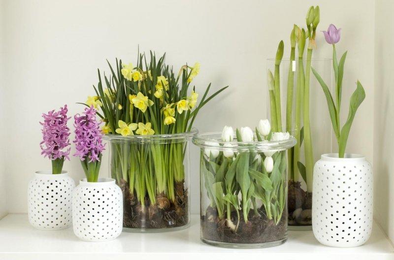 Распродажа Искусственные Цветы В Горшках - товары со 3