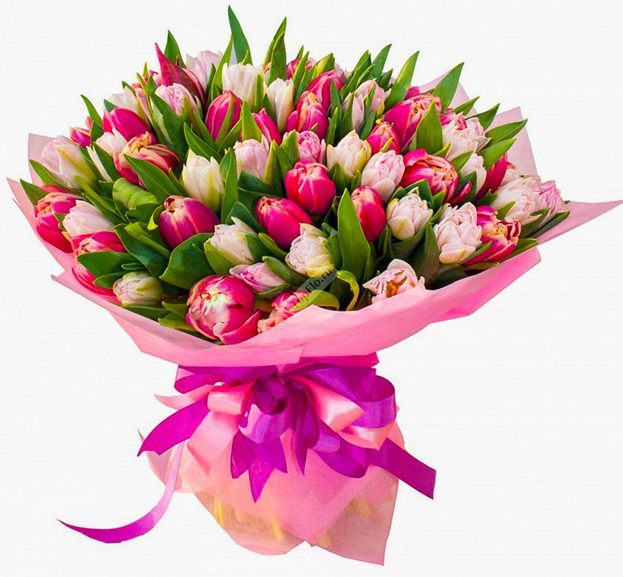Эухарис, букеты цветов из тюльпанов