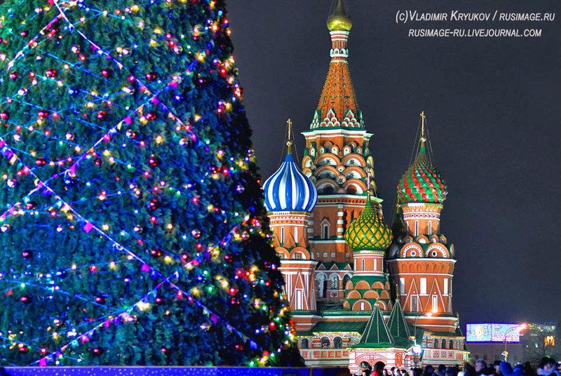 Ель Москва