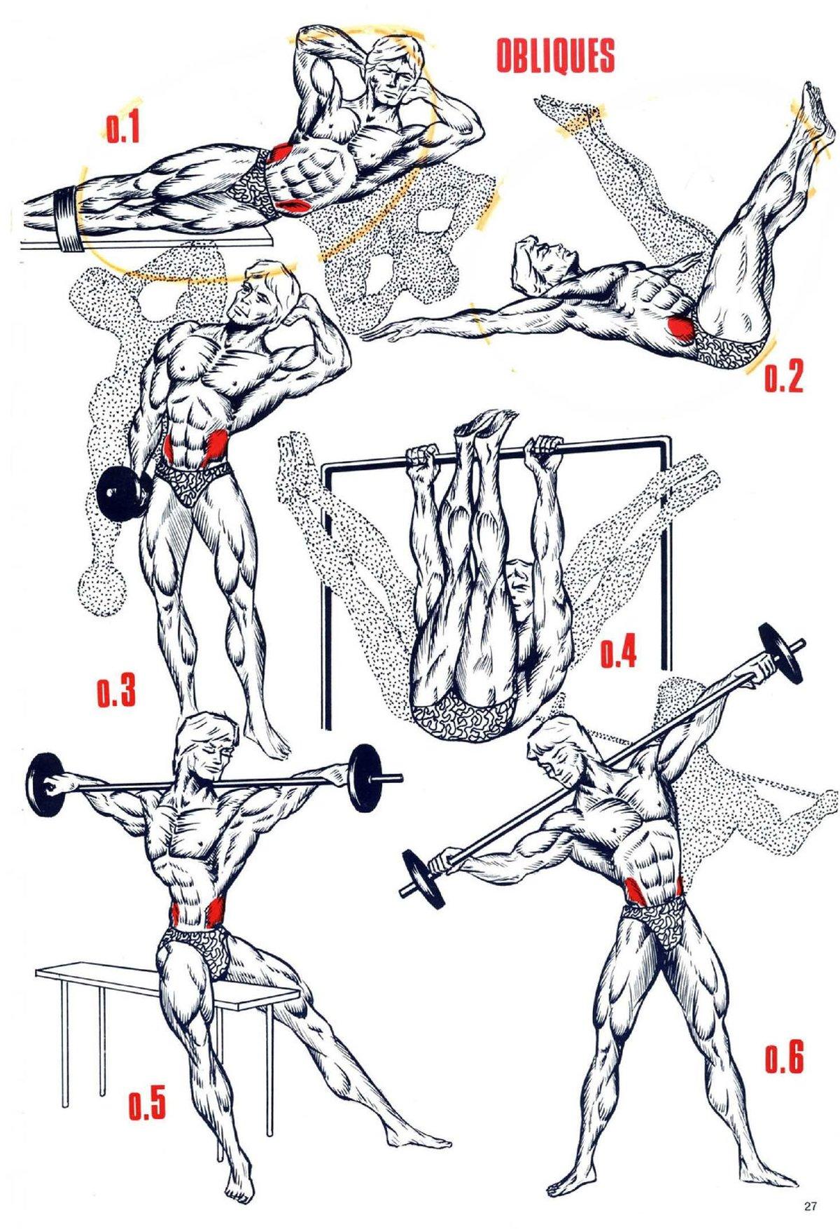 бывшая столица полные курсы прокачки мышц в картинках легко выполните обрезку