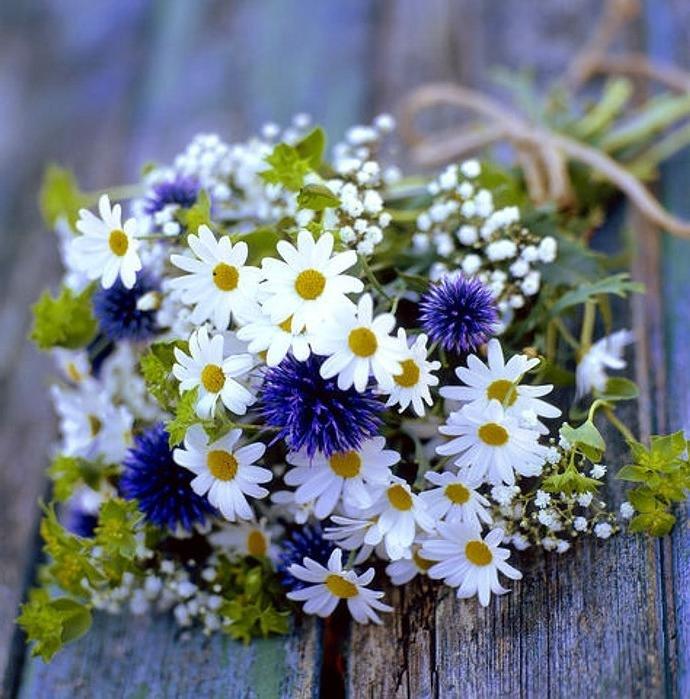 С днем рождения картинки красивые полевые цветы