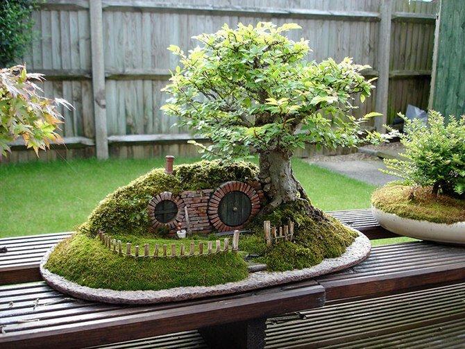 сад вокруг дома