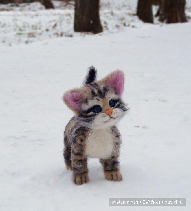 Серий кот
