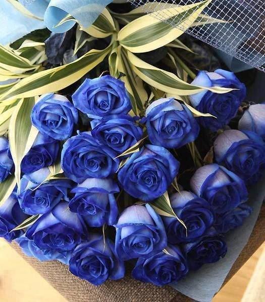Открытка с синими розами
