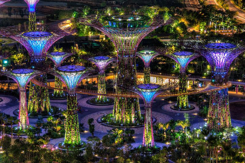 Гигантские деревья необычайной красоты в Сингапурском парке поражают своим великолепием и разнообразием цветов.