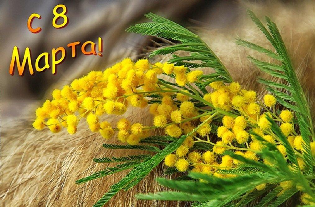 8 марта открытки мимозы, пожеланиями отличного дня