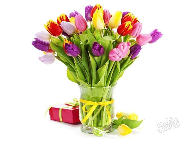 Мужчине цветы какие