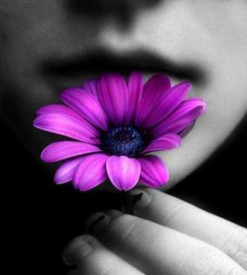 картнки мелких цветов на аватарку для бухгалтеров