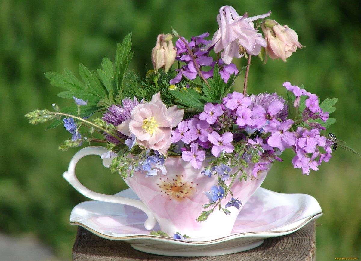 Днем рождения, доброго денечка открытки с цветами
