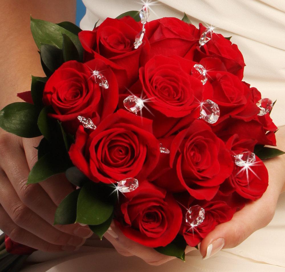 Розы для самой красивой картинки, хороших выходных