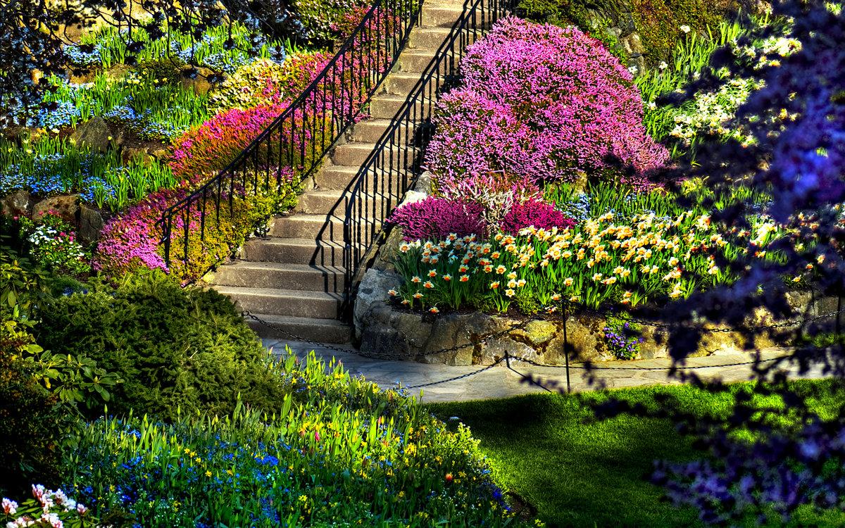 Сентября открытки, картинки сада с цветами и деревьями