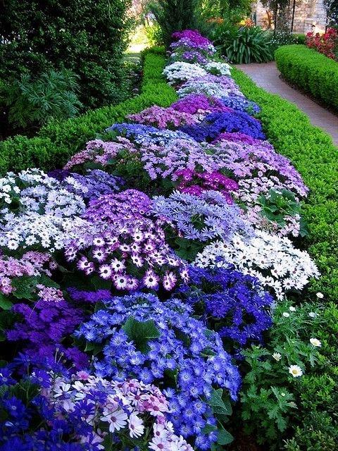 Украшаем сад цветами.