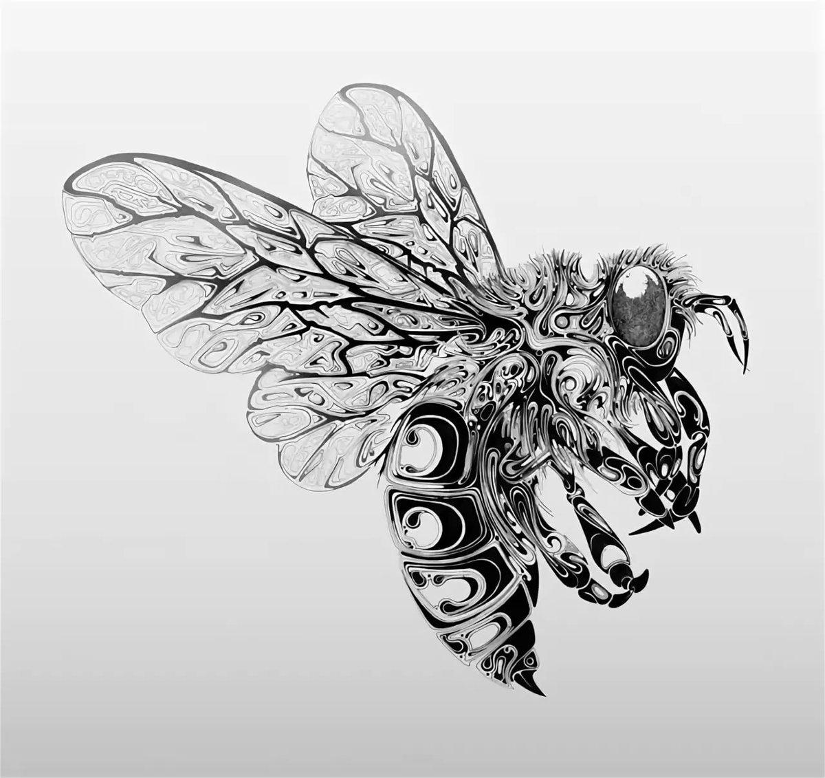 святого пчелы в графике картинки ваша фотография следующий