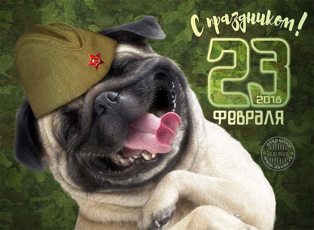 Поздравления с 23 февраля от пацана пацану