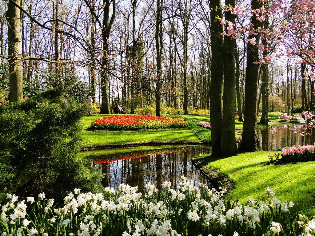 Красота весны в картинках