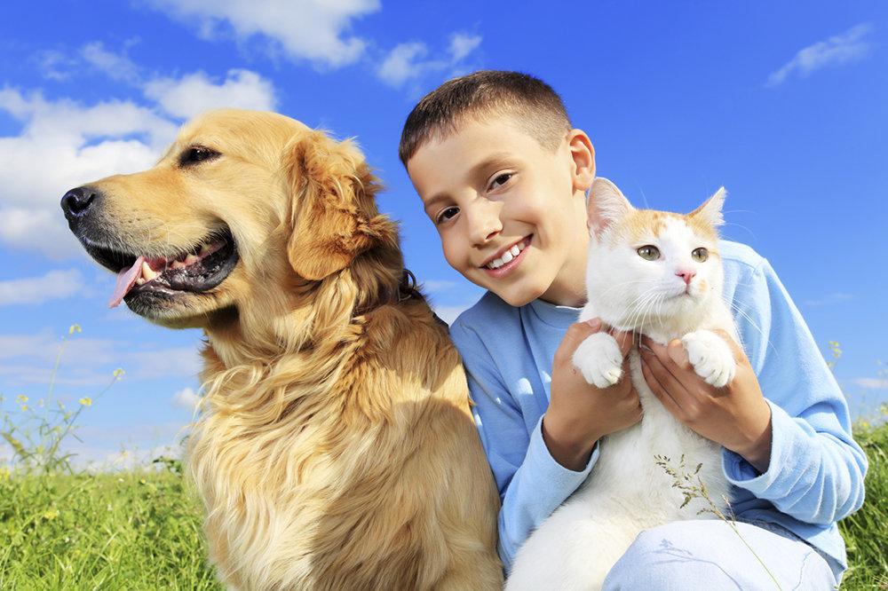 Картинки с животными и людьми, рождением богатыря картинки