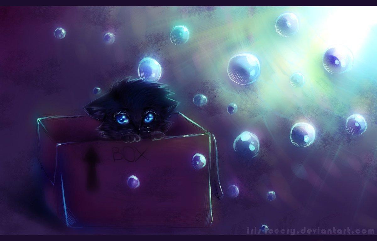 картинки про няшек котят