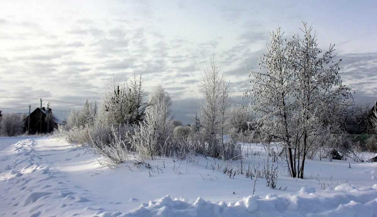Картинки снег идет в деревне