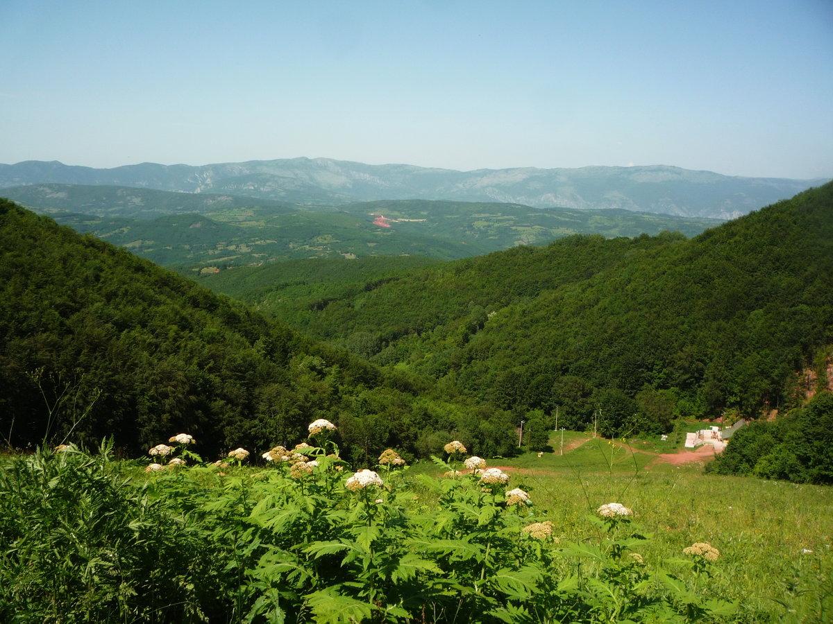 подобное фотографирование природа сербии фото все