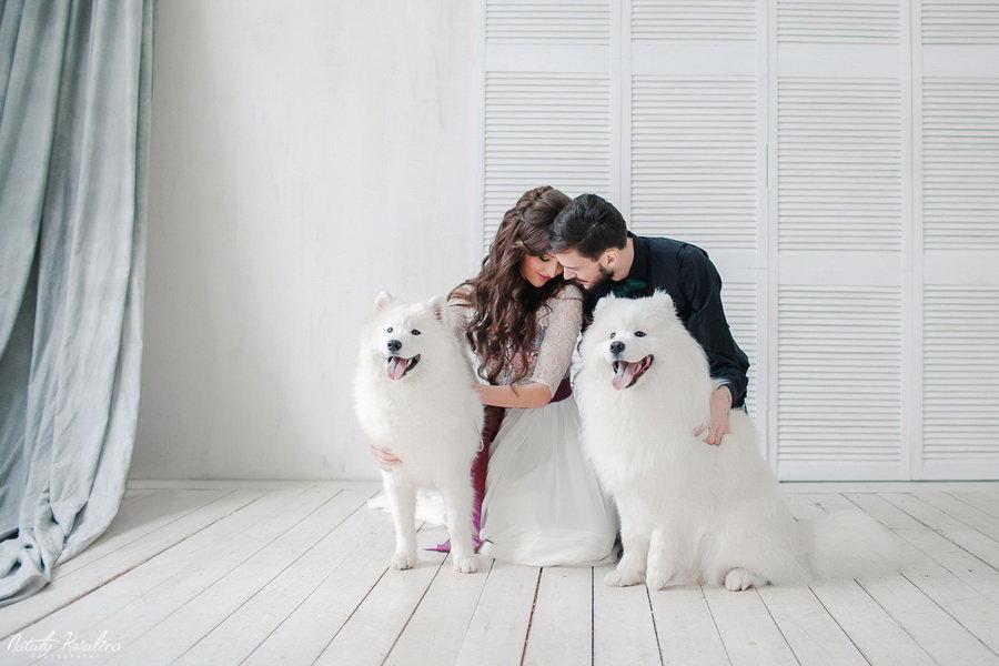 Фото с домашними животными идеи