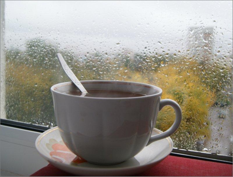 даже предполагали, картинки с добрым утром чай дождь занятие можно