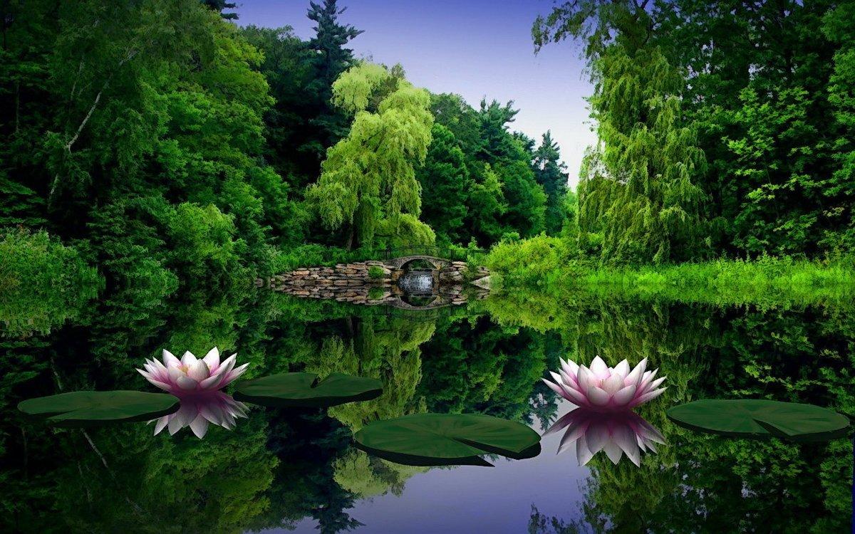 Днем, красивые картинки с природой