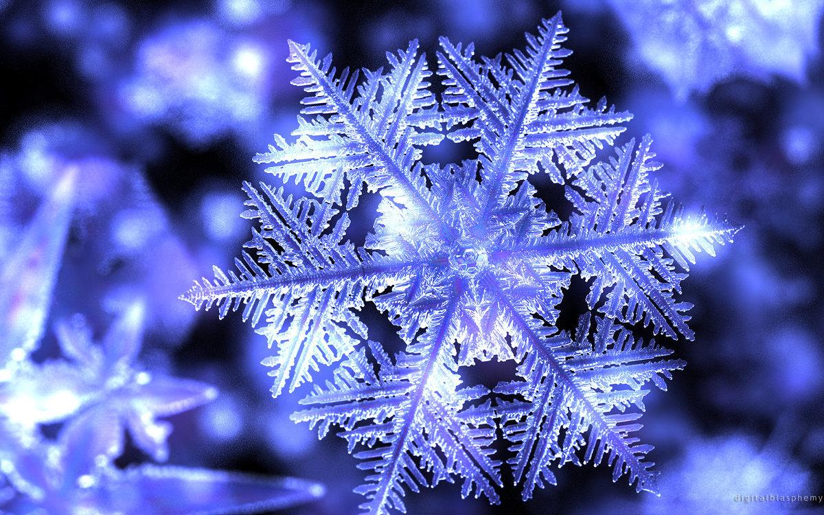 Татарскими поздравлениями, снежинки картинки фото